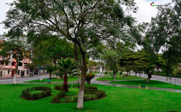 Parque los Molinos
