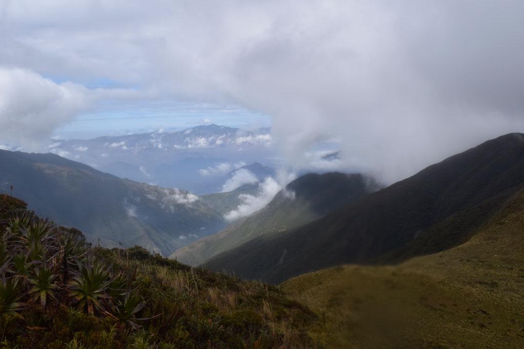 El ir y venir de las nubes, cubren las montañas del Parque Nacional Podocarpus
