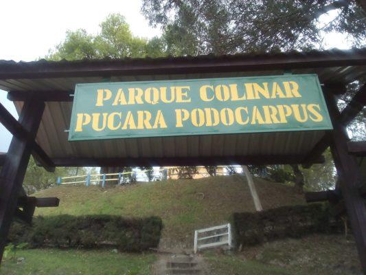 Parque Colinar Pucará-Podocarpus
